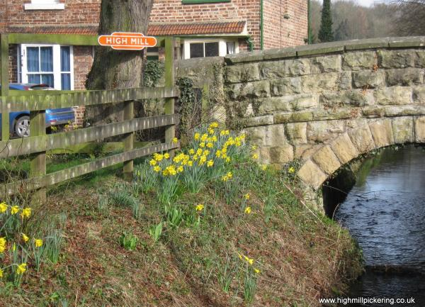 Spring flowers and High Mill totem close to North York Moors Railway